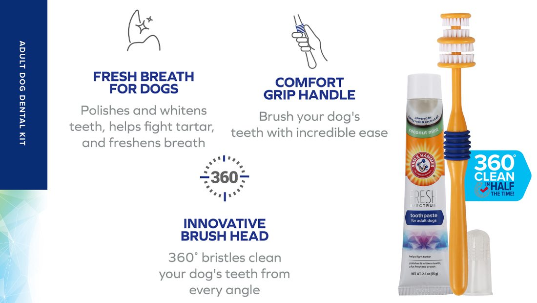 Features for Arm & Hammer Dental Kit
