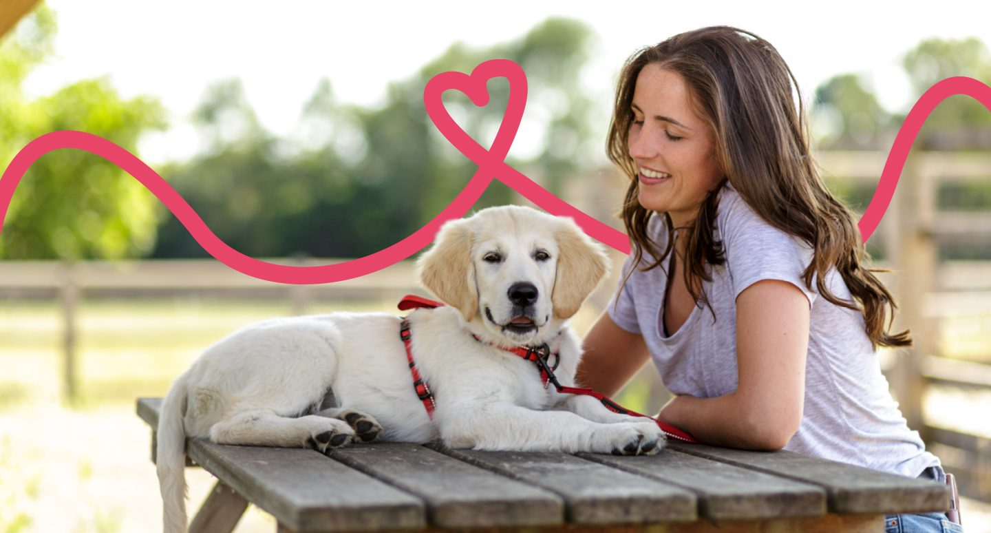 A woman on a bench with her dog wearing a Halti Walking Harness with a graphic heart