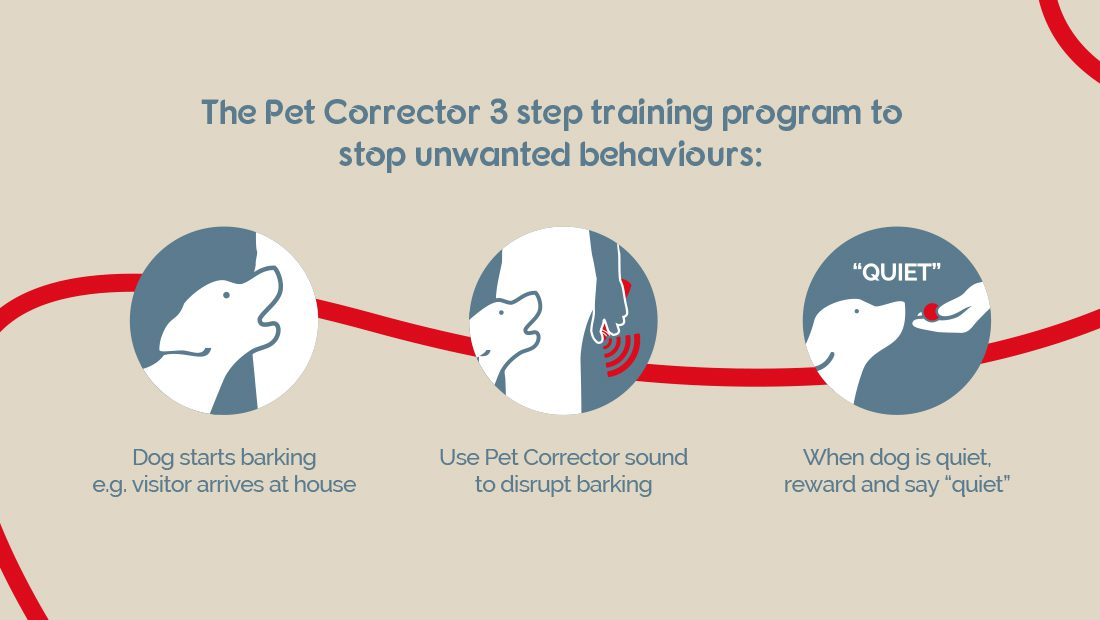 Three step process to use Pet Corrector