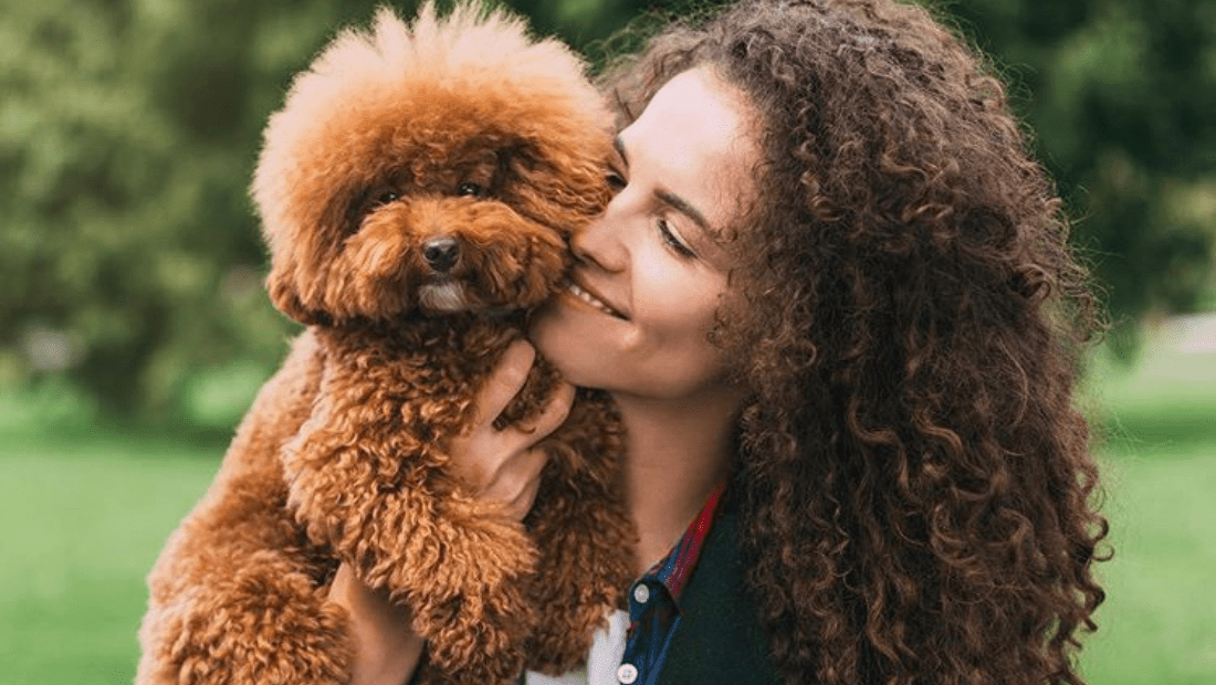 A fluffy dog being held by a woman in a park